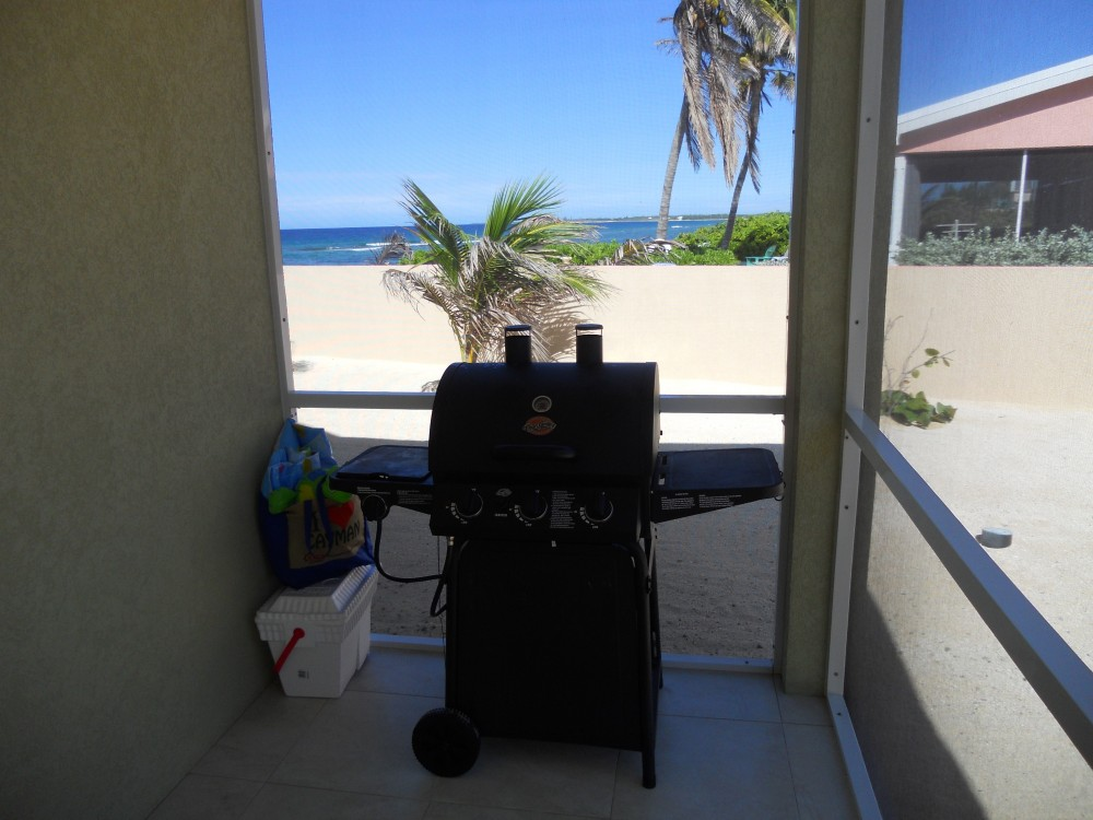 Outdoor Gas BBQ Grill (We provide the propane)