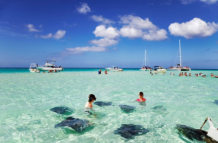 Stingray City and The Sandbar
