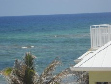Ocean Paradise_Photo11