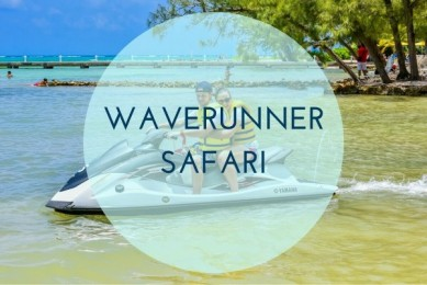 Waver Runner Safari with Red Sails Sports